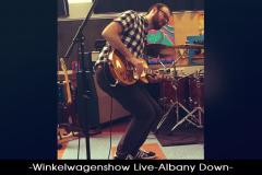 Winkelwagenshow_Live_Albany_Down